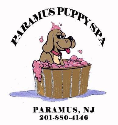 Dog Groomer, ParamusNJ