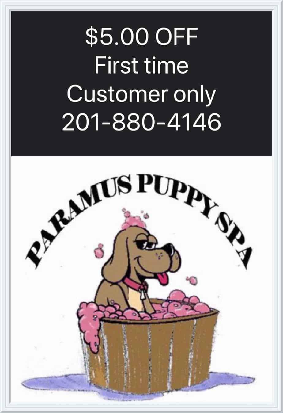 paramuspuppyspa-coupon2019